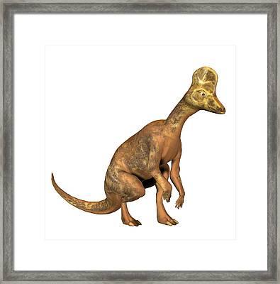 Corythosaurus Dinosaur Framed Print by Friedrich Saurer