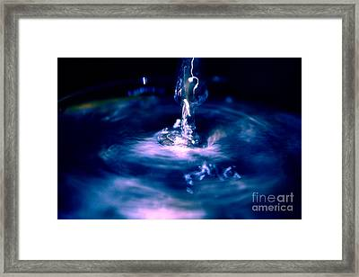 Cosmos Framed Print by Trevor Fellows