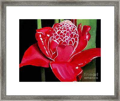 Costa Rican Beauty Framed Print