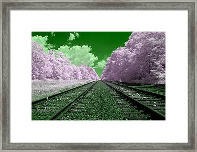Cotton Candy Trees Framed Print