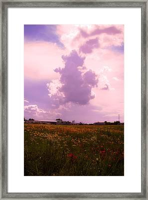 Cotton County Landscape Framed Print by Toni Hopper