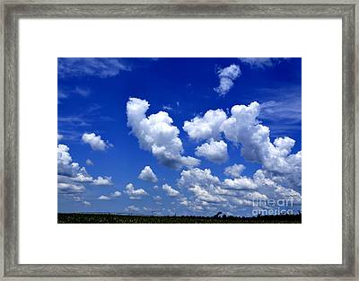 Framed Print featuring the photograph Cottoncandy Sky by Tamera James