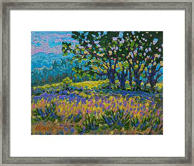 Cottonwood Meadow Framed Print