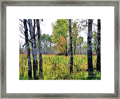Country Autumn Framed Print by Marilyn Smith