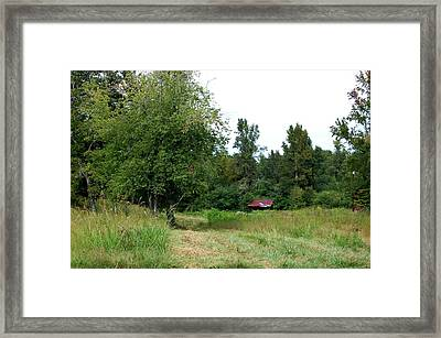 Country Framed Print by Beverly Hammond