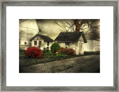 Framed Print featuring the photograph Country Charm by Mary Timman