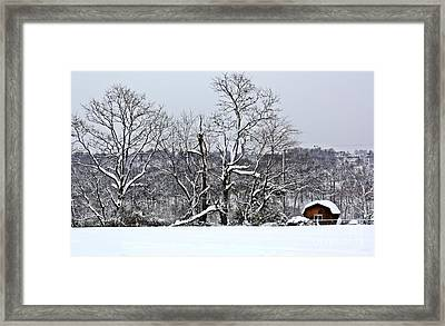Country Christmas 5 Framed Print by Dan Stone