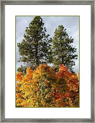 Country Color 24 Framed Print by Will Borden