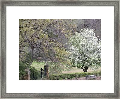 Country Elegance Framed Print by Shawn Hughes