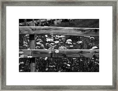 Country Flowers In Black And White Framed Print