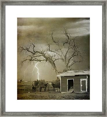 Country Horses Lightning Storm Ne Boulder Co 66v Bw Art Framed Print by James BO  Insogna