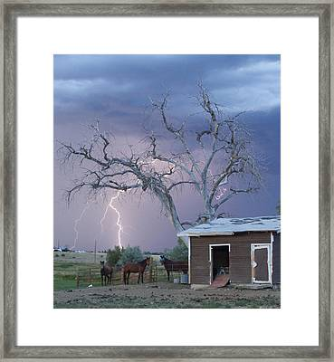 Country Horses Lightning Storm Ne Boulder County Co 66v Framed Print by James BO  Insogna