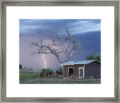 Country Horses Lightning Storm Ne Boulder County Co  Crop Framed Print by James BO  Insogna