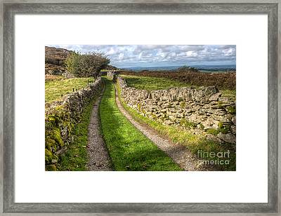 Country Lane Framed Print by Adrian Evans