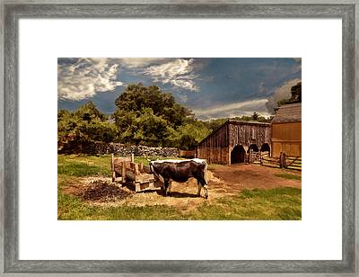 Country Life Framed Print by Lourry Legarde