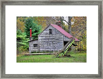 Country Life Framed Print by Todd Hostetter