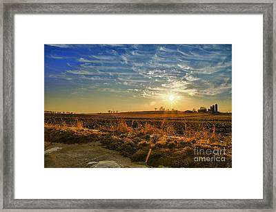 Country Light Framed Print