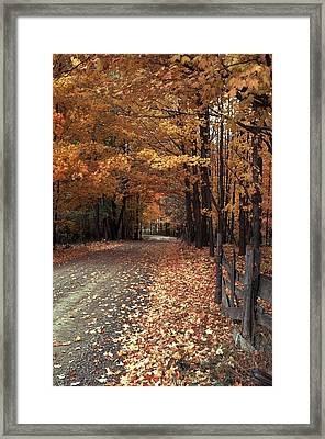 Country Love Framed Print by Michael Swanson