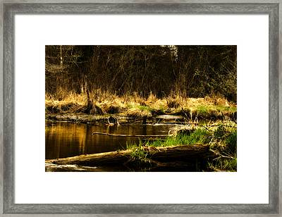 Country River Framed Print by Gary Smith