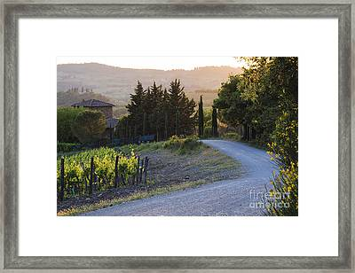 Country Road At Sunset Framed Print by Jeremy Woodhouse
