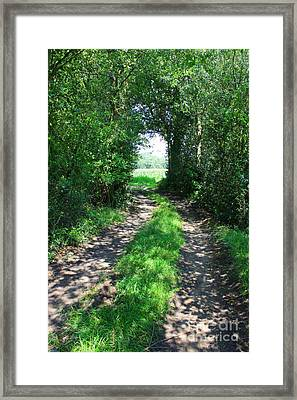 Country Road Framed Print by Carol Groenen