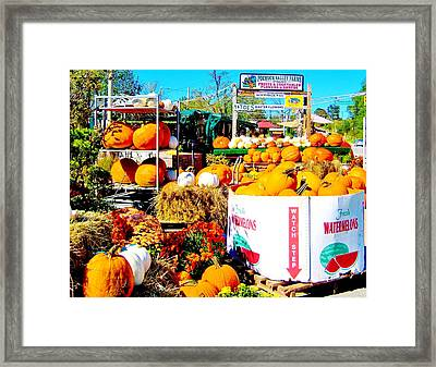 Country Road Farm Stand Framed Print by Susan Carella