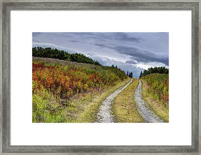 Framed Print featuring the photograph Country Road In Fall by Michele Cornelius