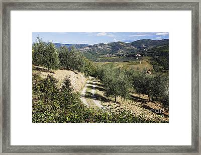Country Road Framed Print by Jeremy Woodhouse