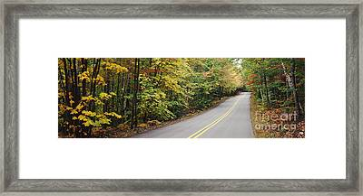 Country Road Through Maine Forest Framed Print by Jeremy Woodhouse