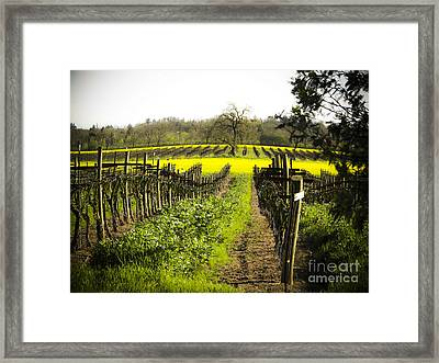 Framed Print featuring the photograph Country Roads by Leslie Hunziker