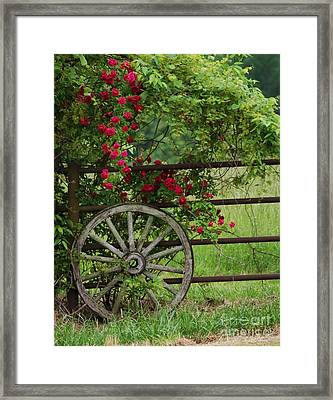 Framed Print featuring the photograph Country Simplicity by Julie Clements
