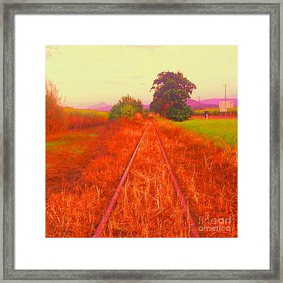 Country Tracks Framed Print by David Peters
