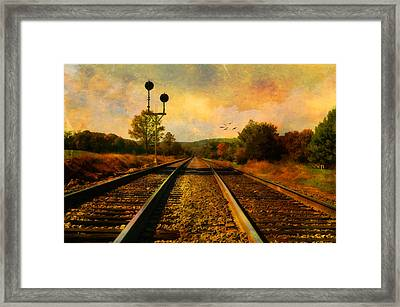 Country Tracks Framed Print by Kathy Jennings