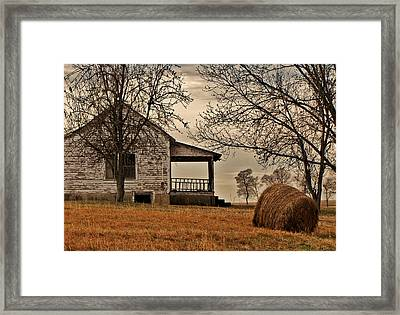 Country World Framed Print