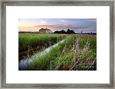 Countryside Landscape Framed Print by Carlos Caetano