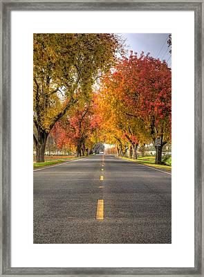 Countryside Framed Print by Ren Alber