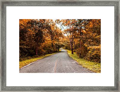 Countryside Road In Autumn Framed Print by Mongkol Chakritthakool