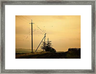 Countryside Road With Birds On Sky Framed Print by Made By  Vitaliebrega.com
