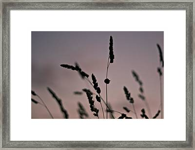 Countryside Twilight Colors Framed Print by Georgia Fowler
