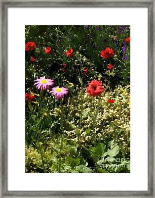 County Line Garden Framed Print