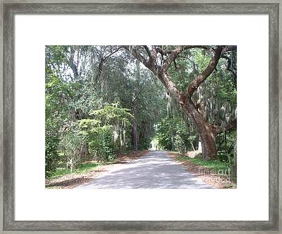 Covered By Nature Framed Print