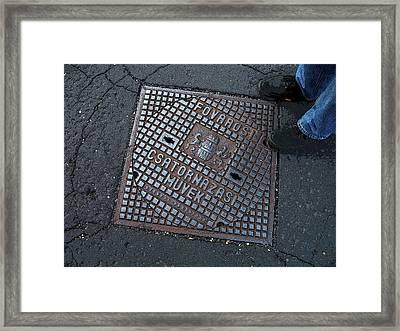 Covered In Hungary Framed Print by Joanne Riske