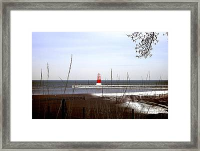 Covered In Light Framed Print by Milena Ilieva