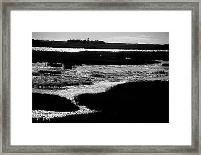 Covering The Marshes Framed Print by Jez C Self