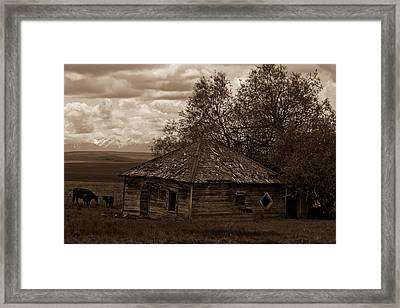 Cow House Framed Print by Jen TenBarge
