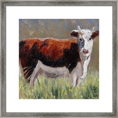Cow In The Meadow Framed Print
