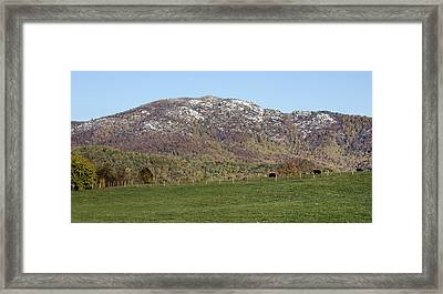 Cow Pasture Below Old Rag Mountain - Virginia Framed Print