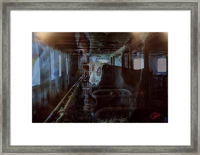 Cow Shelter Indoor Framed Print by Colette V Hera  Guggenheim