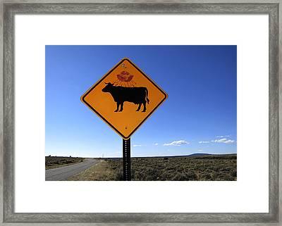 Cow Ufo Road Sign  Framed Print