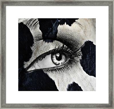 Cow Framed Print by Yosi Cupano